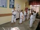 Pokaz karate tradycyjnego