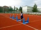 Sport to zdrowie 2014